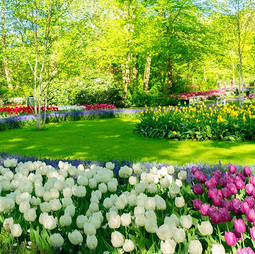 Spring Activities around Grand Rapids