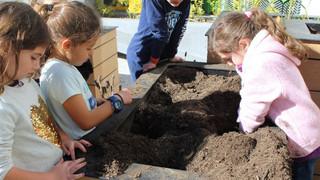 School garden helps Mexican children grow