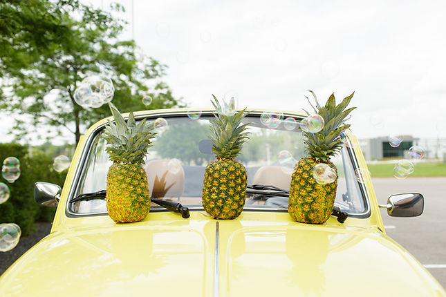 pineapple-238.jpg