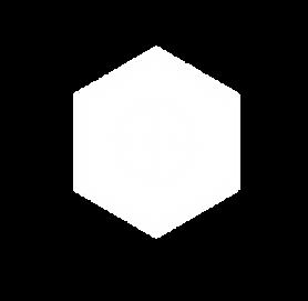 Bradley Gray Logo