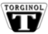 torginol Deco-Coat Flooring