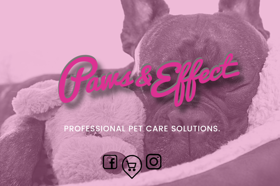 Pink and Blue Pet Care Small Business We
