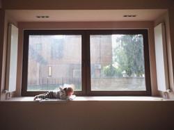 Окно в гостевой комнате