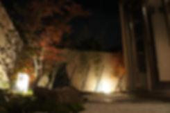 ライトアップで浮かび上がる和庭園