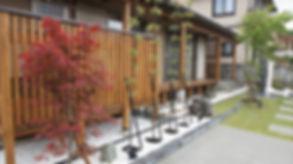 ノムラモミジと黒竹