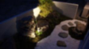 愛知の坪庭 和庭園