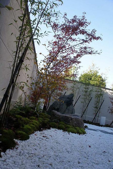 お庭のモミジの紅葉が美しい