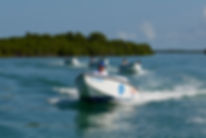 key west safari snokel tour