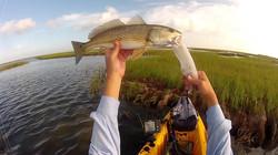 Tybee Fishing Company slot redfish tournament