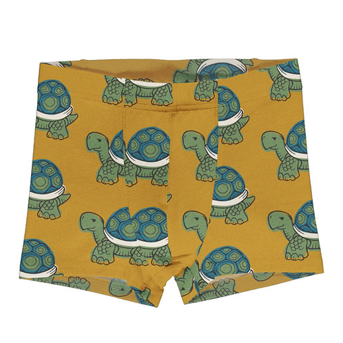 Boxer - Maxomorra - Turtle