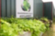 GreenEarth4.jpg
