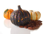Pumpkin_DarkChocolateSplattered_02.jpg