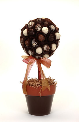 Chocolate Topiary