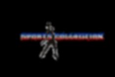 logo sportscollectionlogo.png