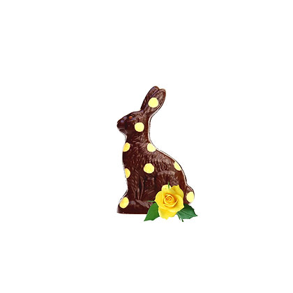 Sitting Small  Easter Bunny