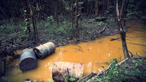 Désastre, Mine d'or en Guyane: pollution des sols, vol de nos ressources