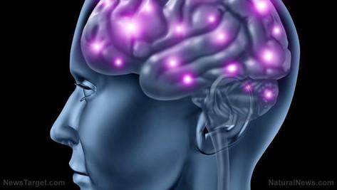Manipuler les souvenirs: nouvelles découvertes scientifiques.