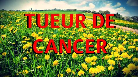 SANTE - Cancer VS Pissenlit: qui défonce l'autre ?