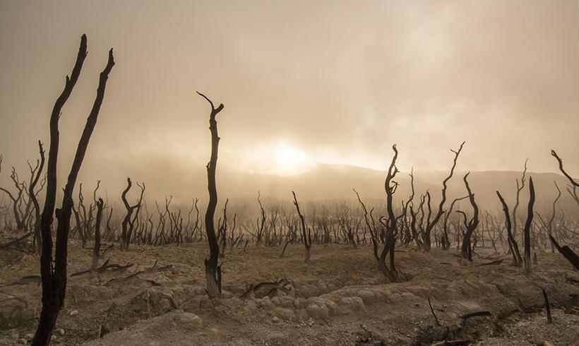 KlimaDürre.png