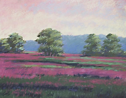 Field of Loosestrife