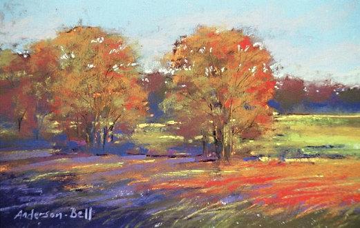 Autumn Oak Trees