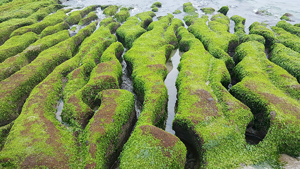 綠石槽海岸