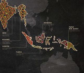 Roasting Frequency Coffee Bean Southeast Asia Sumatra Gayo Mountain Papua New Guinea 咖啡豆 亞洲 印尼 蘇門塔臘 巴布亞