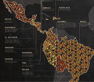 Roasting Frequency Coffee Bean Latin America Brazil Guatemala Colombia Costa Rica 拉丁美 巴西 危地馬拉 哥倫比亞 哥斯達黍加