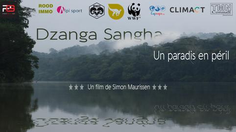 Dzanga Sangha, un paradis en péril