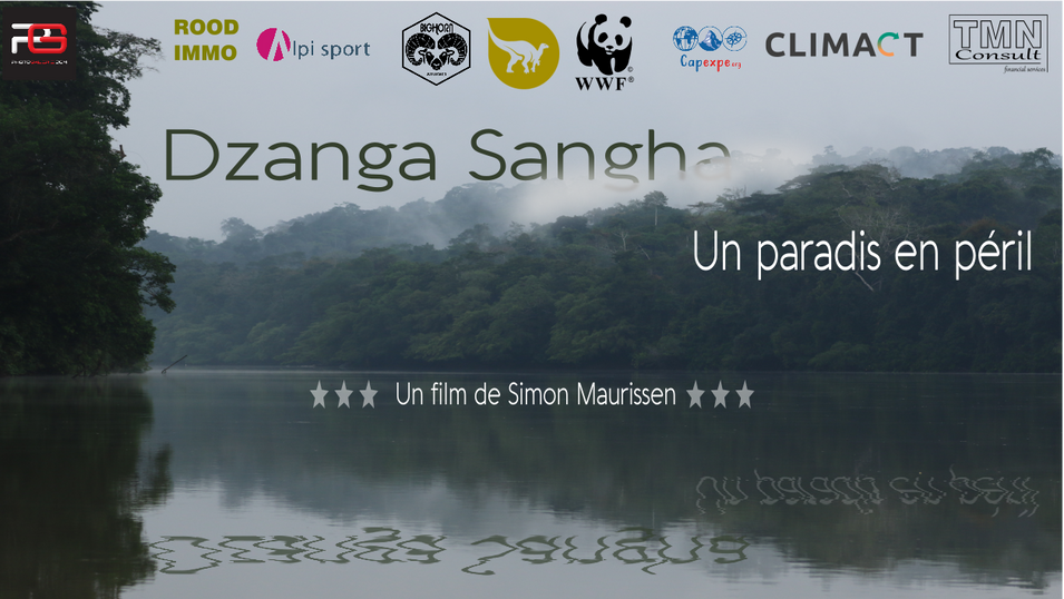 Dzanga Sangha, un paradis en péril.mp4