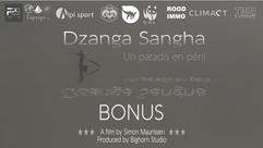 BTS Dzanga Sangha: Un paradis en péril