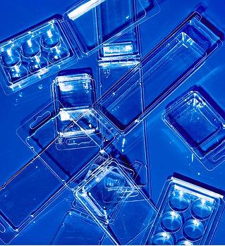 Clamshell Plastic