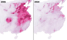 Air Pollution Before and During COVID-19