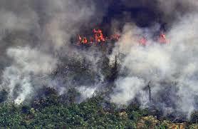 Amazon Fires.jpeg