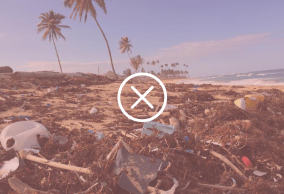 Zero Grocery Zero-Waste