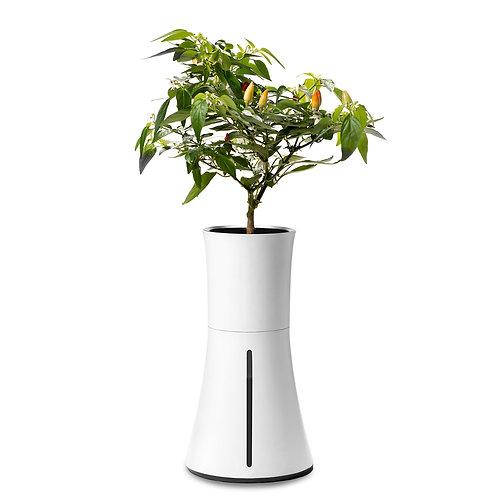 Botanium Self-Watering Planter - White Smoke
