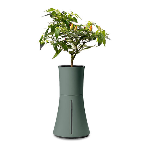 Botanium Self-Watering Planter - Laurel Green