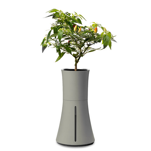 Botanium Self-Watering Planter - Ash Grey