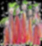 Gaelle de Crombrugghe-cours de chant chorale-