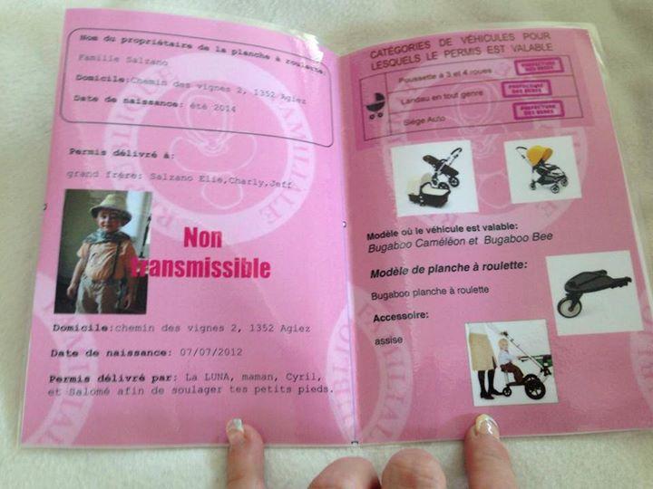 permis_planche_à_roulette_bis