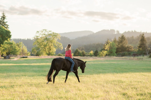 Alyssa Hill | McMinnville, OR | Red's Show Horses