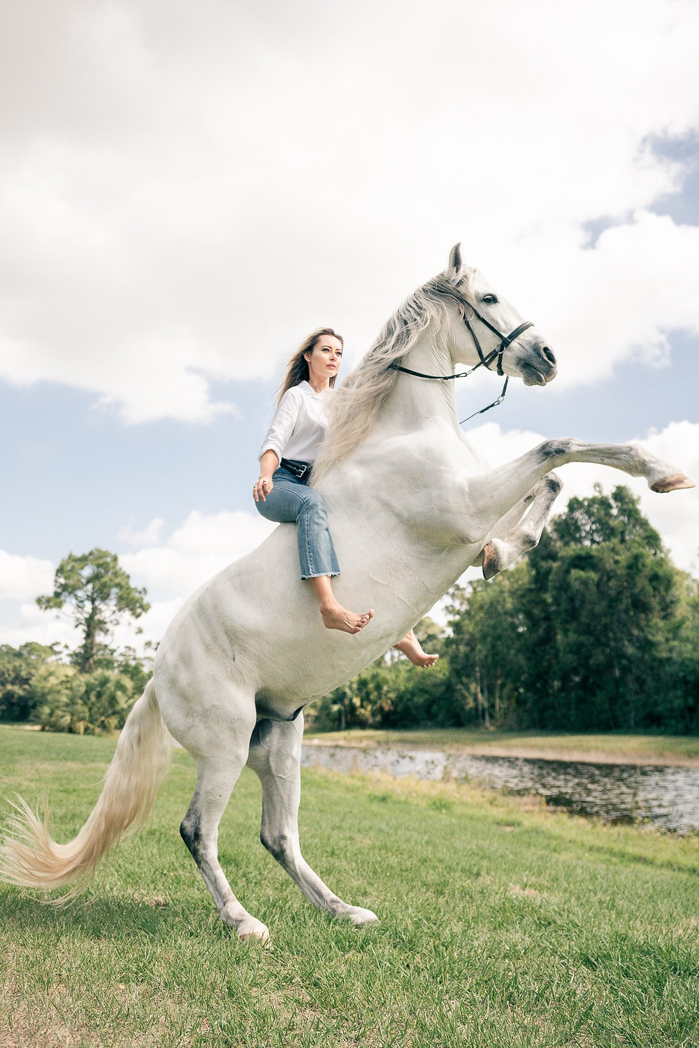 a blonde girl sitting on her horse in a white shirt and jeans while her horse is rearing on his hind legs