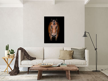 a canvas of a bay quarter horse gelding in a neutral colored living room