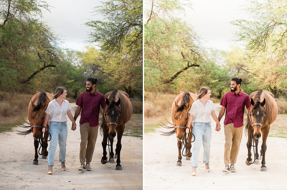 Before and after of Lindsey and Bilal and their two horses in Oahu