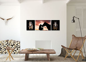 a living room with 3 canvas prints hanging from a photo session of a girl and her horse