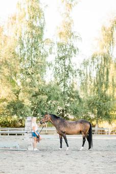 Taylor Gauron | Absolute Hunter Jumpers | Samammish, WA | Rockmeadow Equestrian Center