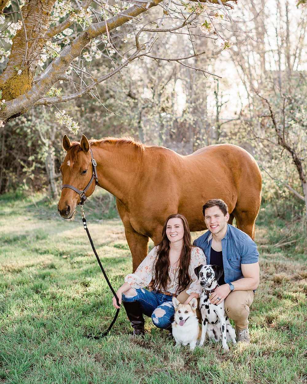 Family photo with horse, 2 dogs, and married couple