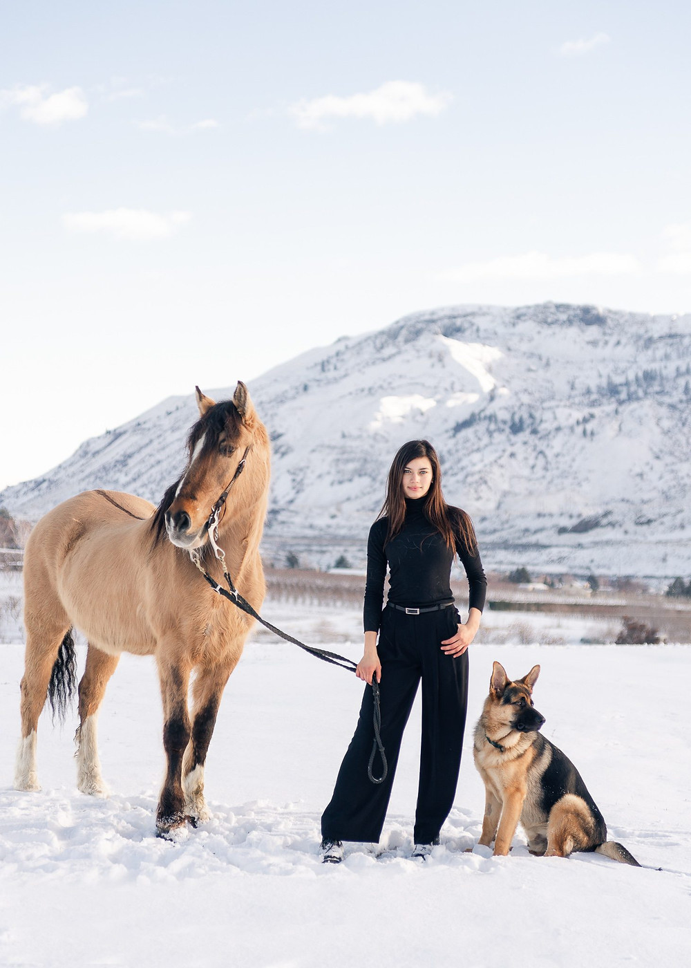 A girl with long dark hair, wearing all dark is standing in the snow in Rock Island, WA with her German shepherd dog and buckskin mustang