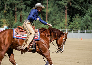 Reining in the Park