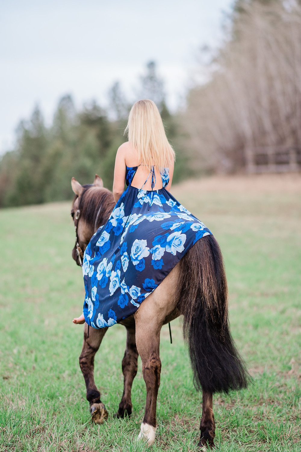 Caitlin riding Olivia with a long blue dress